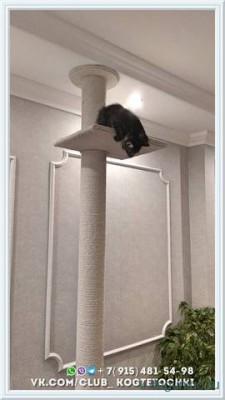 Когтеточка для кошки до потолка - 20689006_m.jpg