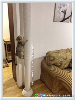 Когтеточка для кошки до потолка - 20689009_m.jpg