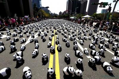 Панды напали на Керамический - Pandas-1[1].jpg