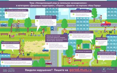Тема Ненадлежащий уход за зелёными насаждениями открыта на портале Наш город  - Инографика_Наш_Город_Зелёнка.png